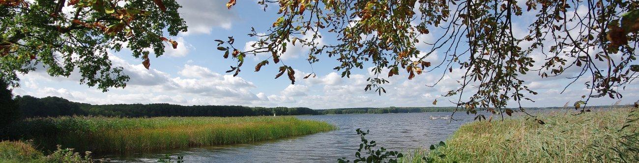 Kloster Himmelpfort, Erholungsort im Wald- und Seengebiet im Norden der Mark Brandenburg: Herbst am Stolpsee
